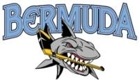Bermudy Logo